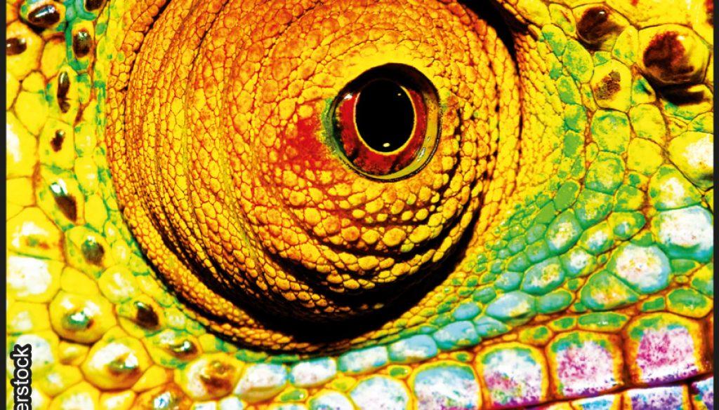 Rätsel zum Thema Reptilien