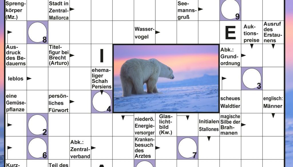 Schwedenrätsel zum Thema Polartiere