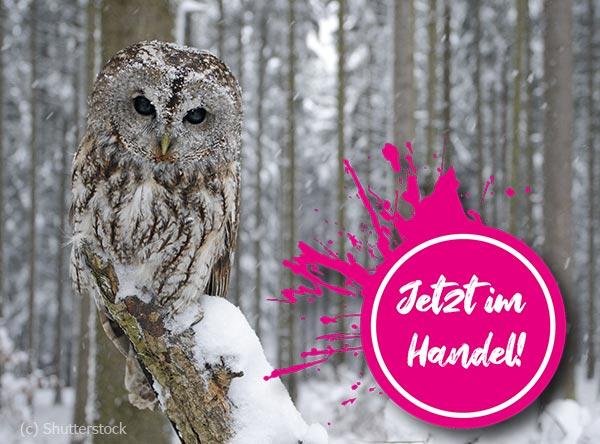 Neue Ausgabe des Rätselfuchs Österreich zum Thema Wilde Fauna