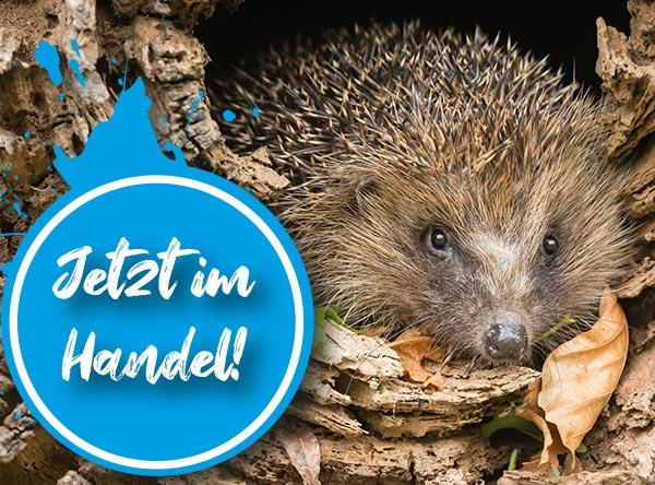 Neue Ausgabe des Rätselfuchs Österreich