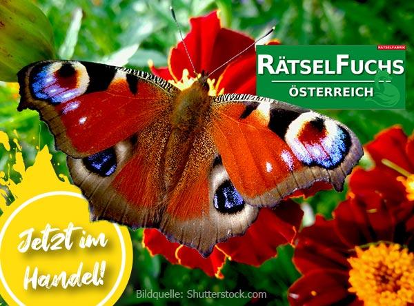Neue Ausgabe Rätselfuchs zum Thema Schmetterlinge